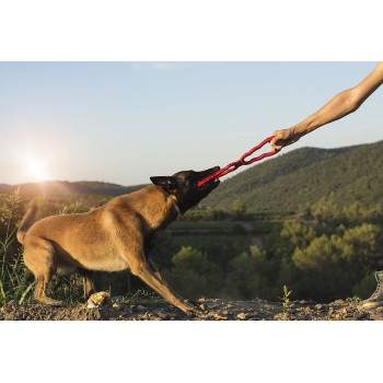 Tug Toy jouet KONG® Jouet chien