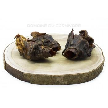 Larynx de chameau Friandise naturelle chien