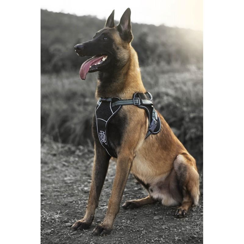 Harnais Arka Dog multisport Noir&Gris Martin Sellier pour chien