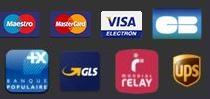 Paiement par Visa, Mastercard, Maestro